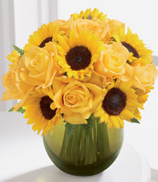 sunflowers roses Flowers for cat lovers—finally some cat safe choices