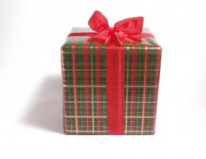wrapped gift 300x232 FREE Gift: 6 Natural Ways to Help Your Cat Live Longer