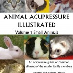 acupressure illustrated 150x150 Cat healing story: acupressure and a rescue kitten
