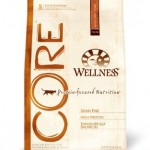 wellness core dry 150x150 Best dry cat foods (with caveats)