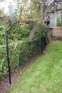 PUrrfect fence infront 200x300 Blissing out outdoors with indoor cats: cat enclosure reviews (part 2)