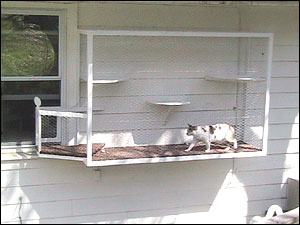 window box Blissing out outdoors with indoor cats: cat enclosure reviews (part 2)