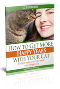 catHappyYears transparentBG smallest Natural Flea Control for Cats   Surprises and Solutions