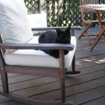 Blissing out outdoors with indoor cats: choosing the perfect cat enclosure (part 1)