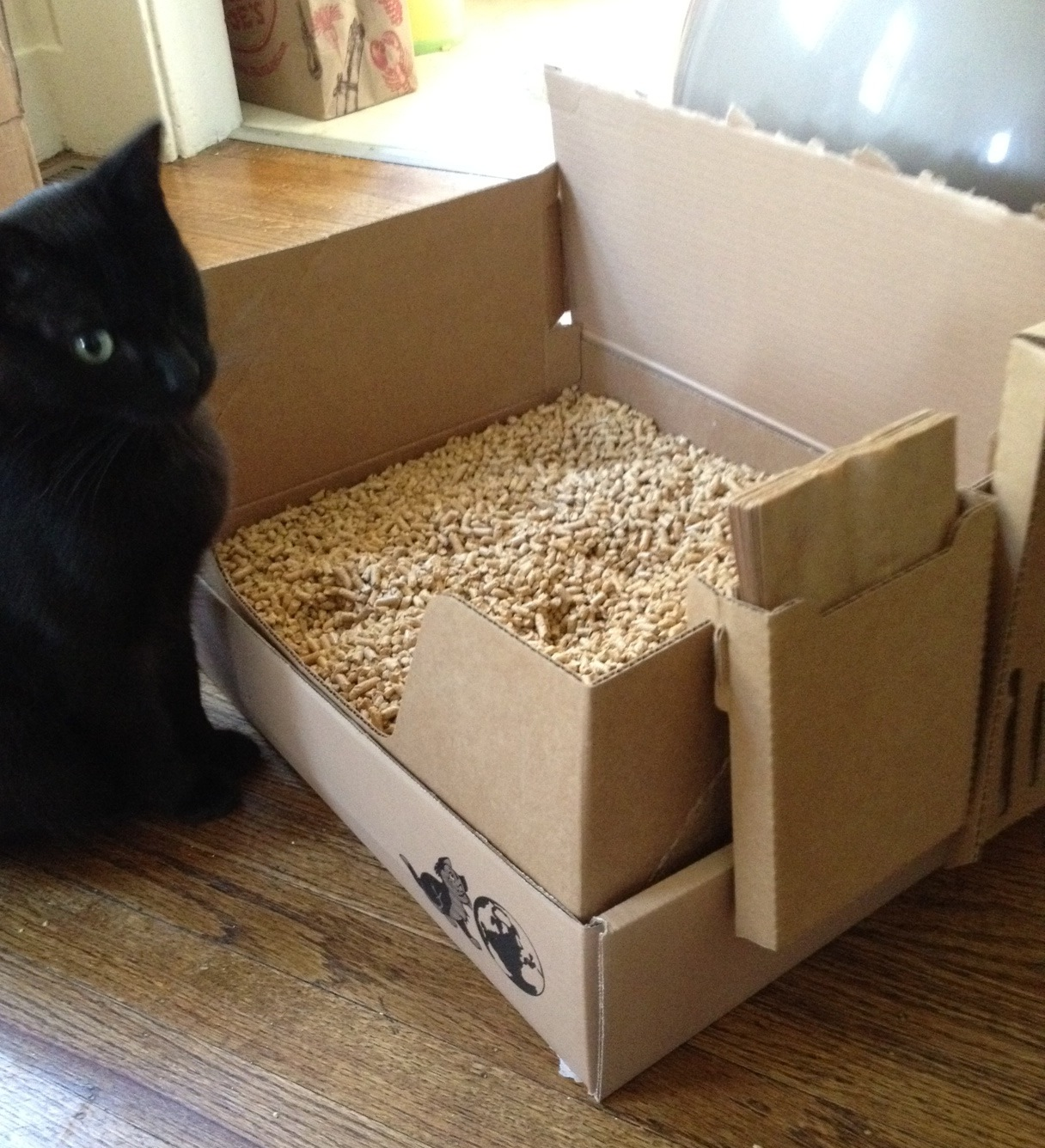 Natural Cat Litter The Quest For The Perfect One